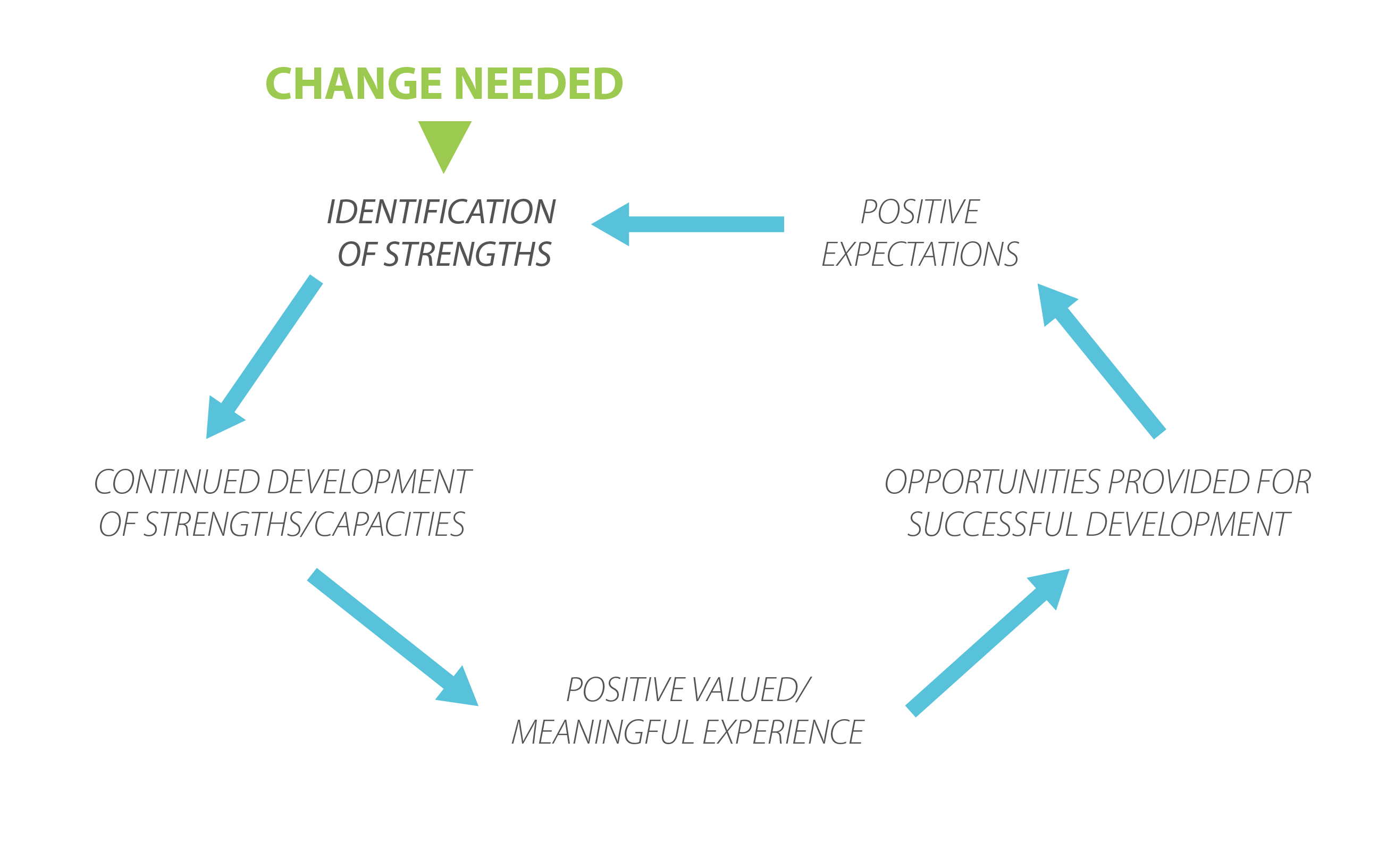 strength based approach the homeless hub the strengths based cycle