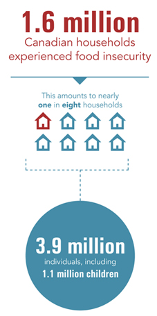 1.6 million Canadian households experienced food insecurity in 2011